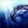 Hilde Oddfish of Bjornear