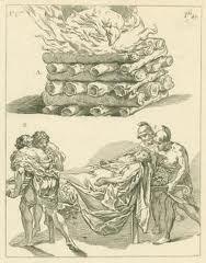 Acanthus Tacitus