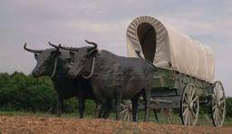 Owyn's Wagon
