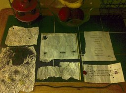 Dante's Papers