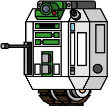 S-19IM