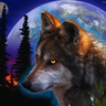 Robert's Wolf Cannis