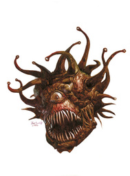 Colin the Beholder
