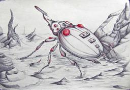Tracker Beetle
