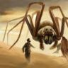 Sand Spider