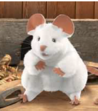 Ivan the Giant White Mouse