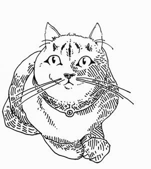 Cat-Lord Schnookums