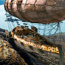 Derelict Airship