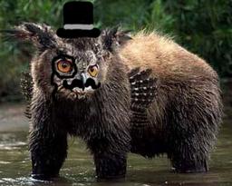 Sir Owl Bearington