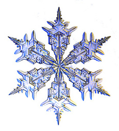 Eternal Snowflake