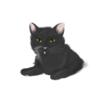 J.C. (Cat)