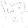Groll Schlammapfel