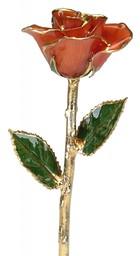 Empress Jingû's rose