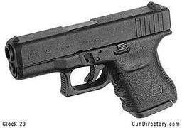 Glock 29, Standard