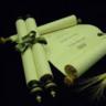 The Apostolic Scrolls
