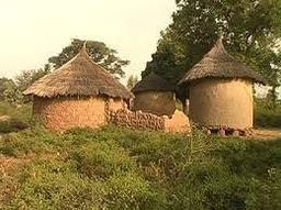 Timargo Huts