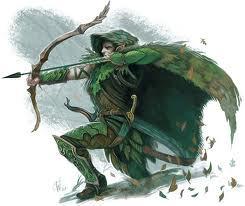 Kallin (4e Character)
