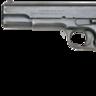 G.W.S. M1875