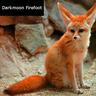 Darkmoon Firefoot