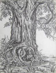 The Tree of Desire