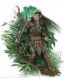 Sylen Leafrunner