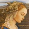 Lady Sylvia Medvyed