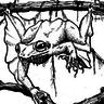 Giant Vampire Frog