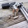 Magnum S&W .44