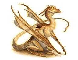 Pseudo Dragon