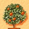 Kifatsuk Tree