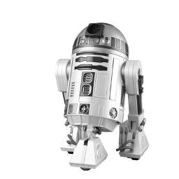 R2-DO