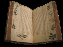 Kuku's Herbal