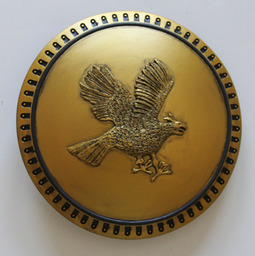 Bronze Eagle Shield