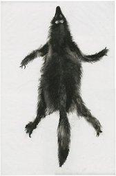 Hellhound Pelt