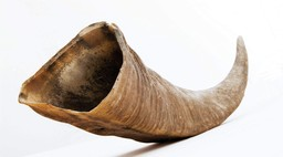 Horn of Havoc
