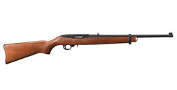 Ruger 10/22 Long Rifle